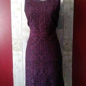 Ann Taylor Lace Purple Size 10 Dress (NWT)